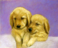 goldenPuppies